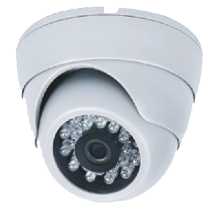 Ganz LTB-IR3.6PS 3.6mm 650tvl IR Eye ball Dome Camera