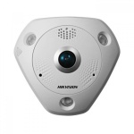 Hikvision Fish-eye Network Cameras
